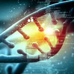KOMPLETNA AKTIVACIJA DNK IN INTUICIJE